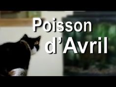 Poisson d'Avril ! April's Fool in France + Laughter Vocabulary - Learn French