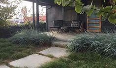 California Native Plants: Tips From the Experts California Native Plants, California Garden, Vegetable Bed, Outdoor Spaces, Outdoor Decor, Beach Bungalows, Backyard, Patio, Outdoor Gardens