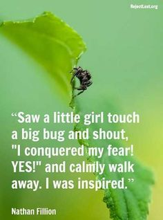 """From """"20 Overcoming Fear Quotes To Inspire!"""" Lol still not enough to touch a bug."""