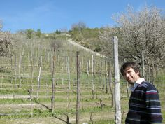Here I am in my wineyards