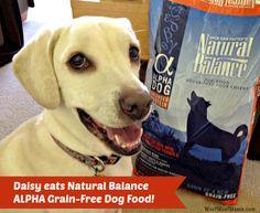 Daisy eats Natural Balance ALPHA Grain-Free Dog Food and loves it!