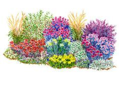 Low on water? No problem! This garden plan has you covered. Even if you're in a drought or there's just not enough rain, it doesn't mean you can't have a beautiful garden. Check out this free garden plan, which includes a garden illustration, diagram, list of plants, and instructions. There are annuals, perennials and shrubs in this garden plan, and your yard will be gorgeous from spring to fall.