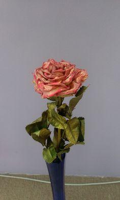 Oživení růže