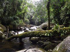 cachoeira a 500 metros da casa