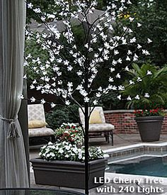Perfect White 240 LED Cherry Tree 6.5 Feet   Indoor   Outdoor