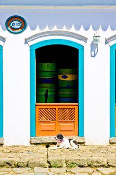 Cão de Guarda. Cuidando do patrimônio do Brasil. Paraty/RJ