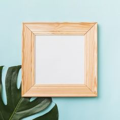 Square frame near leaf Free Photo