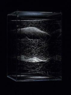 Tomás Saraceno Coma Berenices, 2013 Andersen's Contemporary @FeriaARCOmadrid