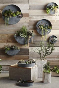 LIVING WALLS: For the brick walls between the windows. these are for succulent plants only. Orbea Zinc Planters by Roost