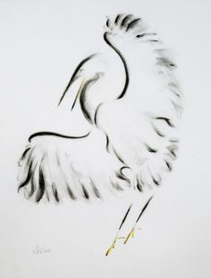 Strength - My ink and charcoal drawing of a bird.  29.7  by 37 cm.