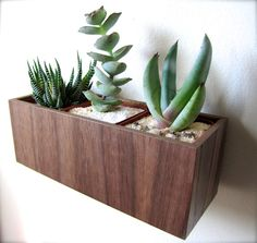 Wall Planter Plant Holder Succulent Holder made by thewoodybeckers, $35.00