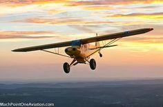 Piper Cub. MachPointOneAviation.com
