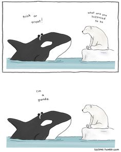 """Panda whale: """"Trick or treat!"""" """"What are you supposed to be?"""" """"I'm a panda."""" """"Duh, obviously"""" Memes Humor, Funny Memes, Funny Cute, The Funny, Hilarious, Liz Climo Comics, Funny Animals, Cute Animals, Talking Animals"""
