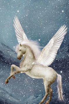 Gods Goddesses Legends Myths: The Great Greek Winged Horse, Pegasus.