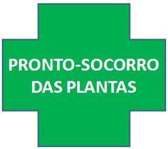 pronto_socorro_das_plantas remédios caseiros para pragas