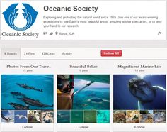 Oceanic Society Science Illustration, Science And Nature, Non Profit, Natural World, Organizations, Wildlife, Ocean, Earth, Activities