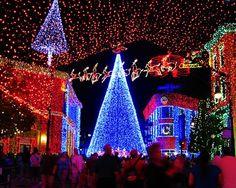 Awesome Christmas Tree Lights | #Christmas #decor