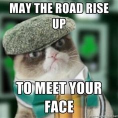 Grumpy Irish cat - may the road rise up to meet your face