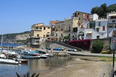 Angelo's Bar, Sorrento: See 98 unbiased reviews of Angelo's Bar, rated 4.5 of 5 on TripAdvisor and ranked #55 of 269 restaurants in Sorrento. Sorrento, Bar, Naples, Trip Advisor, Restaurants, Porto, Food, Restaurant