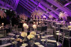 Adler Planetarium & Astronomy Museum Reviews & Ratings, Wedding ...