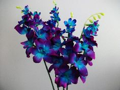 amazing hand dyed blue galaxy orchids