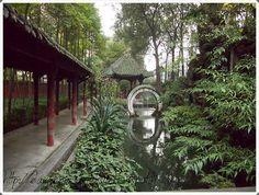 elämää ja elämyksiä: Wenshu, Chengdu China