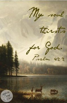 My soul THIRSTS for God.   Psalm 42:2  ❤️ this Scripture!