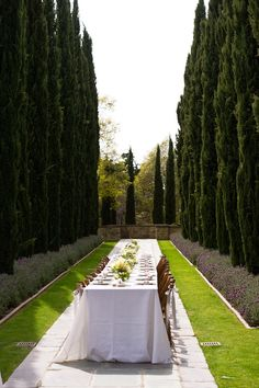 Tall cypress trees surround al fresco dining for a crowd Outdoor Rooms, Outdoor Dining, Outdoor Gardens, Indoor Outdoor, Porches, Landscape Design, Garden Design, Italian Garden, Cypress Trees