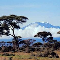 Tanzania - this was the view from my dad's house as a kid!