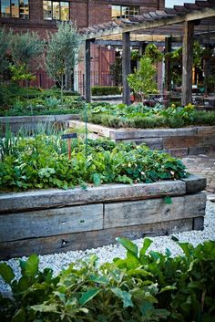 Vegetable Gardening For Beginners The Grounds - Alexandria Sydney - Michael Wee - This place is amazing , coffee, vegie gardens, gourmet food general store - Gardening In The Rain