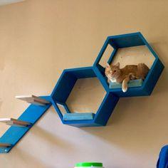 Cat Climbing Shelves, Cat Wall Shelves, Sisal, Cat Activity Centre, Cat Feeder, Food Feeder, Cat Climber, Cat Stairs, Cat Gym