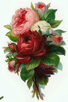 Flowers172