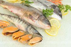 Ryby - porady praktyczne