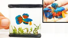 how to: betta fish in mini tank from resin and polymer clay Polymer Clay Fish, Polymer Clay Miniatures, Polymer Clay Jewelry, Fimo Clay, Biscuit, Minis, Betta Fish Tank, Clay Tutorials, Resin Crafts