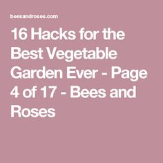 16 Hacks for the Best Vegetable Garden Ever - Page 4 of 17 - Bees and Roses