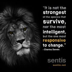 famous resilience quotes - Google Search
