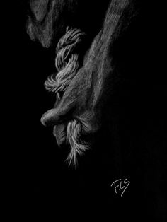 Rope. white on black drawing