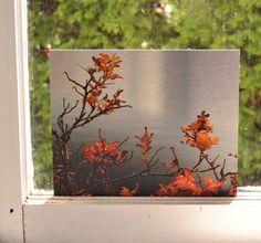 Photograph of Orange Leaves Printed on Dibond Aluminum by NinaHaighPhotography, $90.00