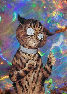 Psychedelic Cat  #cats #doh