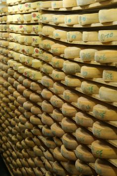 Caves de Morbier, Cheese ripening cellar in the Franche-Comté region of France