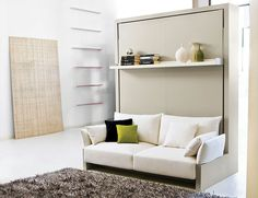 Transformable murphy bed system with front sofa