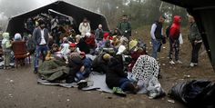#Internacional  #Croacia abre su frontera con Serbia; miles intentan cruzar