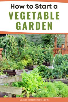 Nothing is more DIY than a vegetable garden. The first thing you need to know is anyone can have a green thumb. It's really all about paying attention to the plants in the garden. Follow these simple steps to start your very own vegetable garden. #vegetablegardeningtips Starting A Vegetable Garden, Vegetable Garden For Beginners, Gardening For Beginners, Vegetable Gardening, Backyard Patio, Backyard Landscaping, Diy Playground, Playground Flooring, Brick Patterns Patio