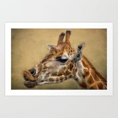 Pucker Up Art Print by F Photography and Digital Art - $18.00