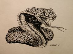 I used a Lizards head, a Cobra's neck and a Rattle Snakes body, Indian ink drawing