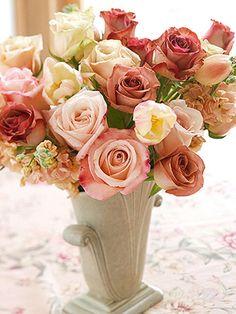 Jardineria set sala. Flores
