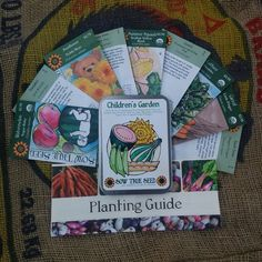 Themed garden seed collection – Children's Garden: Foster the love of gardening in the next generation! This grouping of seeds was chosen for their fun colors, silly shapes, and yummy flavors sure to appeal to kids of all ages! Includes packets of: Dragon Tongue Bush Bean, Little Finger Carrot, Tennessee Spinning Top Gourd, Freckles ORG Lettuce, Jack B Little Pumpkin, Sugar Ann Snap Pea, Scallop Yellow Bush ORG Summer Squash, Teddy Bear Sunflower, Sugar Baby Watermelon #gardengift