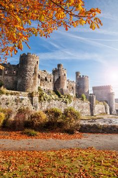 Conwy Castle sits against the backdrop of the rugged Snowdonia landscape just outside the town of Llandudno. Be sure to see it on your trip to Wales!