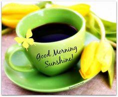 Good Morning Sunshine!!!...:-) :-)
