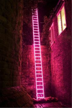 'Eschelle', neon ladder by Ron Haselden, Lumiere Durham Photo by Matthew Andrews. The neon and the background